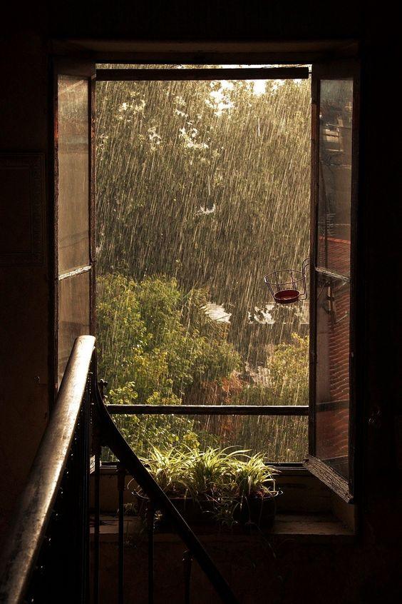 عکس عاشقانه بارانی ،دونفره در هوای بارانی