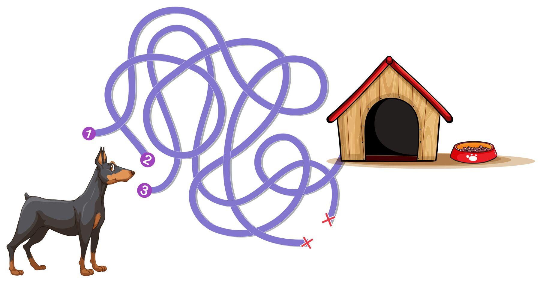 عکس ماز برای کودکان ،تمرین ماز برای کودکان ساده و سخت